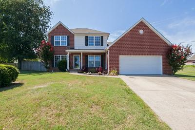 Spring Hill Single Family Home For Sale: 1315 Chapman Ct