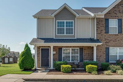 Spring Hill Single Family Home For Sale: 3020 Dena Ln