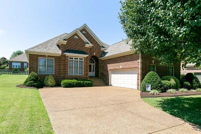 Spring Hill Single Family Home For Sale: 3043 Ohallorn Dr