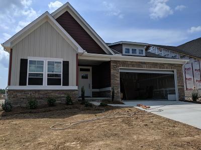 Smyrna Single Family Home For Sale: 1009 Carnation Drive