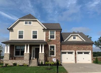 Nolensville Single Family Home For Sale: 1889 Abbey Wood Drive