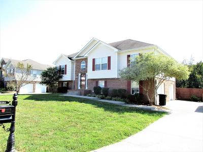 Clarksville Single Family Home For Sale: 3394 Quicksilver Ct