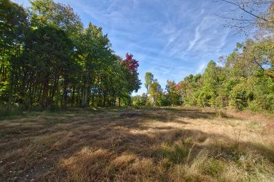 Residential Lots & Land For Sale: Dickens Hill