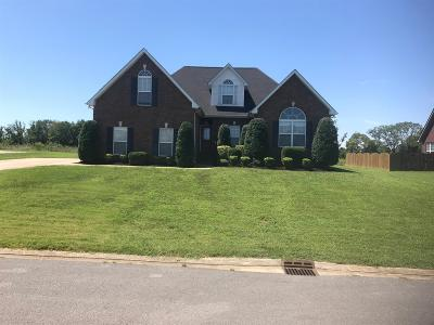 Murfreesboro Single Family Home For Sale: 721 Indian Park Dr