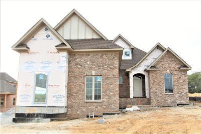 Mount Juliet Single Family Home For Sale: 309 Nichols Vale Lane #309