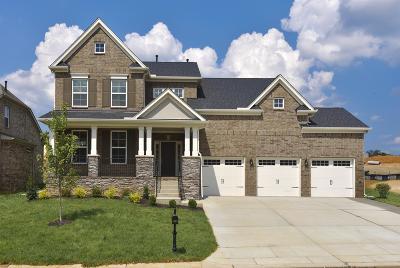Mount Juliet Single Family Home For Sale: 305 Ella Lane, L112