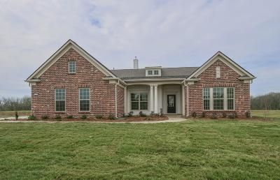 Maury County Single Family Home For Sale: 3014 Putnam Grove #301