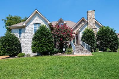 Hendersonville Single Family Home For Sale: 1029 Island Brook Drive