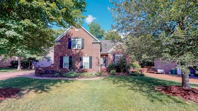 Spring Hill Single Family Home For Sale: 1168 McCoury Ln