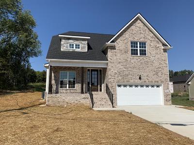 Smyrna Single Family Home For Sale: 5508 Endurance Ln