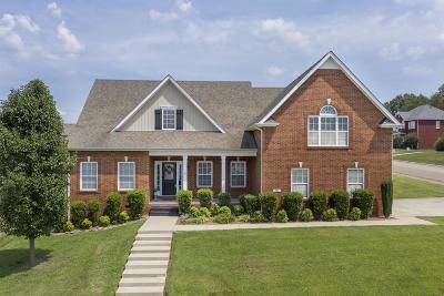 Montgomery County Single Family Home For Sale: 201 Spring Terrace Ln