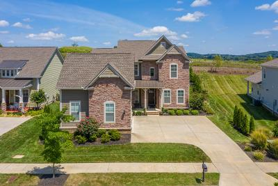 Thompsons Station  Single Family Home For Sale: 2881 Americus Dr