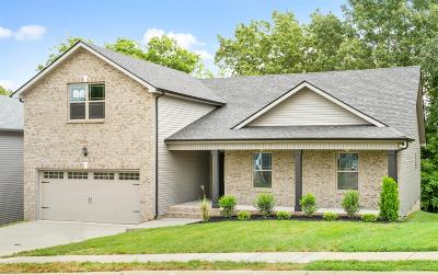 Montgomery County Single Family Home For Sale: 238 Timber Springs