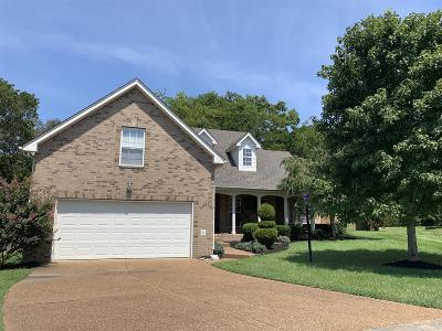 Mount Juliet Single Family Home For Sale: 214 Gold Ct