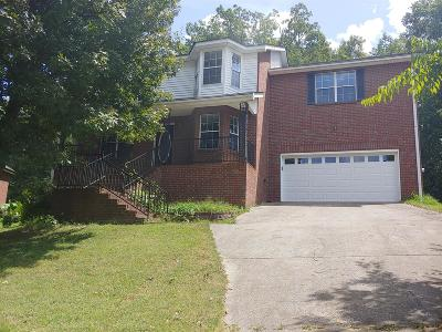 Smyrna Single Family Home For Sale: 404 Mountain View Ct