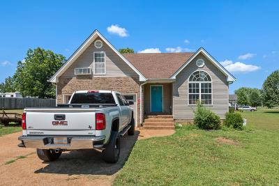 Sumner County Single Family Home For Sale: 132 Kimberly St