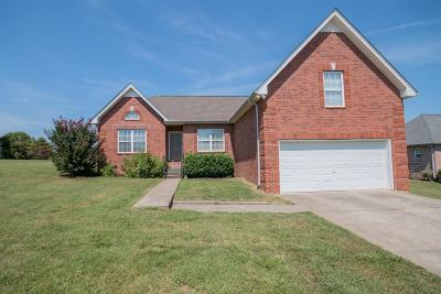 Robertson County Single Family Home For Sale: 4010 Summit Dr.
