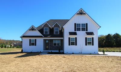 Wilson County Single Family Home For Sale: 4553 Hartsville Pike