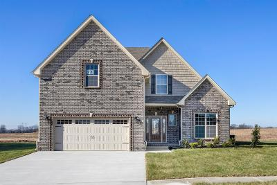 Montgomery County Single Family Home For Sale: 28 Reserve At Hickory Wild