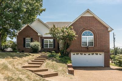 Sumner County Single Family Home For Sale: 133 Waterford Way