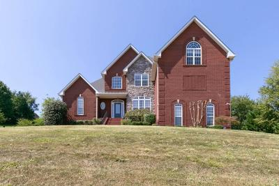 Mount Juliet Single Family Home For Sale: 312 Windhaven Bay