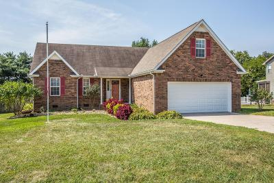 Spring Hill Single Family Home For Sale: 1707 Dublin Ct