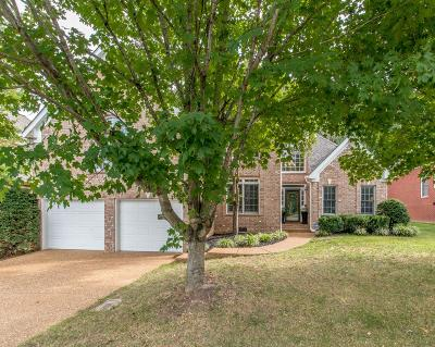 Williamson County Single Family Home For Sale: 229 Polk Place Dr