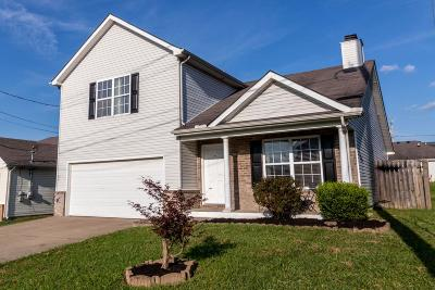 Rutherford County Single Family Home For Sale: 226 Quiet Ln