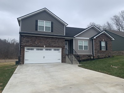Montgomery County Single Family Home For Sale: 223 Timber Springs