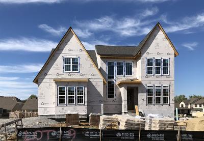 Nolensville Single Family Home For Sale: 139 Telfair Ln Lot 9