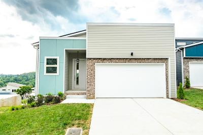 Davidson County Single Family Home For Sale: 1749 Boxwood Dr. Lot 83