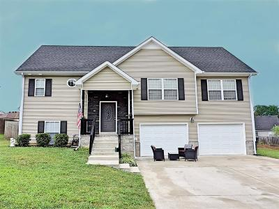 Clarksville Single Family Home For Sale: 1228 Meachem Dr