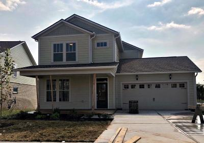 Spring Hill Single Family Home For Sale: 794 Ewell Farm Drive #352