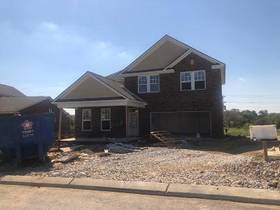 Spring Hill Single Family Home For Sale: 780 Ewell Farm Drive #345