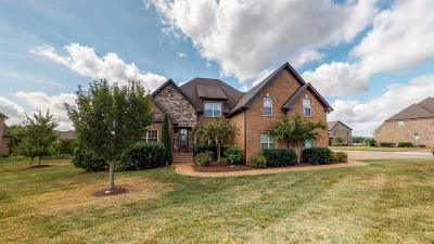 Spring Hill  Single Family Home For Sale: 1789 Witt Way Dr