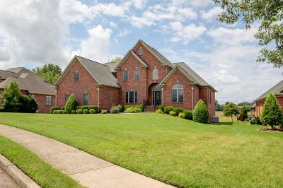 Clarksville Single Family Home For Sale: 310 Gray Hawk Trail