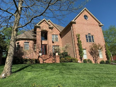 Hendersonville Single Family Home For Sale: 185 Spy Glass Way