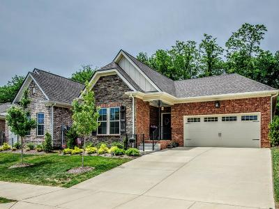 Nolensville Single Family Home For Sale: 908 Springlane Dr