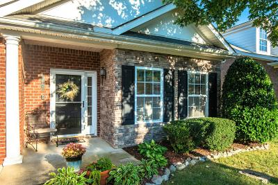 Spring Hill Single Family Home For Sale: 1065 Misty Morn Cir