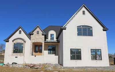 Mount Juliet Single Family Home For Sale: 845 Harrisburg Lane