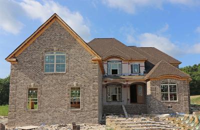 Mount Juliet Single Family Home For Sale: 848 Harrisburg Lane
