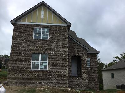 Goodlettsville Single Family Home For Sale: 218 Sydney Drive Lot 15