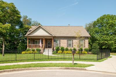 Old Hickory Single Family Home For Sale: 213 Warren Ct