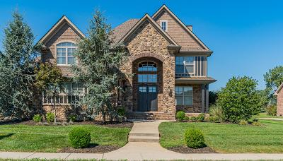 Clarksville Single Family Home For Sale: 2596 Stones Manor Way