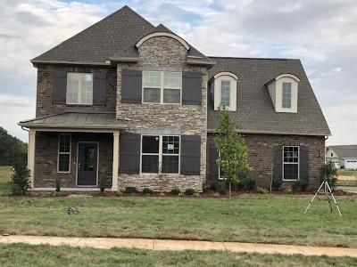 Nolensville Single Family Home For Sale: 120 Madison Mill Drive. Lot 20