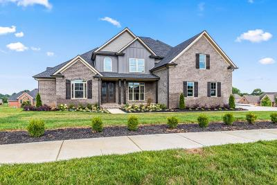Clarksville Single Family Home For Sale: 1489 Overlook Pointe