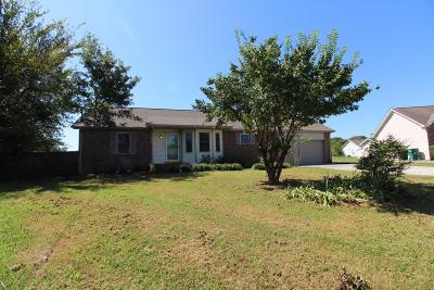 Single Family Home For Sale: 904 Rivergate Ct
