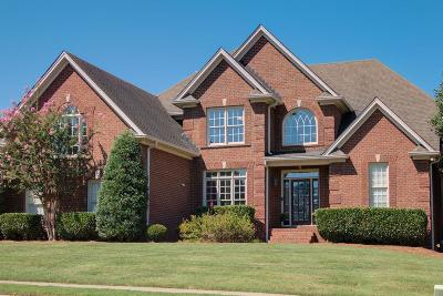Hendersonville Single Family Home For Sale: 115 Blue Ridge Dr