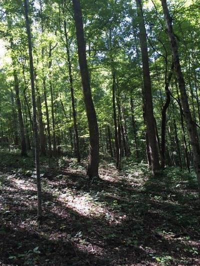 Franklin Residential Lots & Land For Sale: 5 Greenbrier Rd