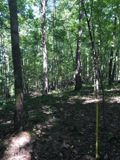 Franklin Residential Lots & Land For Sale: 3 Greenbrier Rd